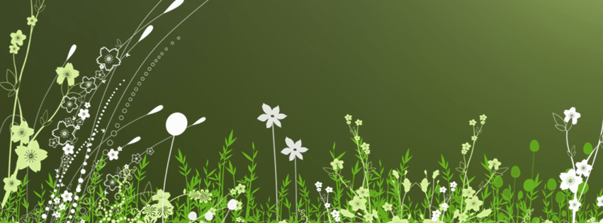 Green Facebook Covers