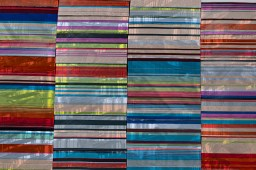 """Ryan Leitner, """"Strange Inheritance, A Riot Book,"""" 2020, installation detail"""