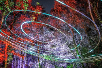 One of the lights above pathways at Magical Woodland https://www.magicalwoodland.com