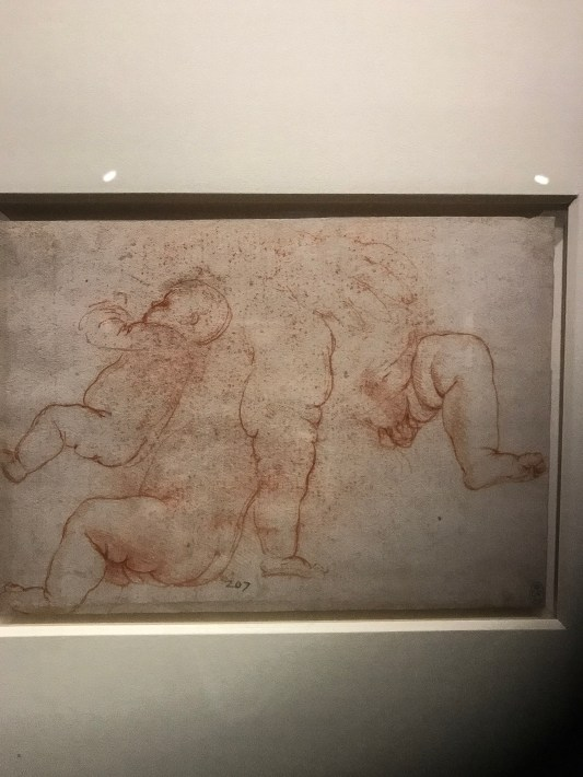 Leonardo's Infant anatomy that helped Leonardo paint the Virgin and Child