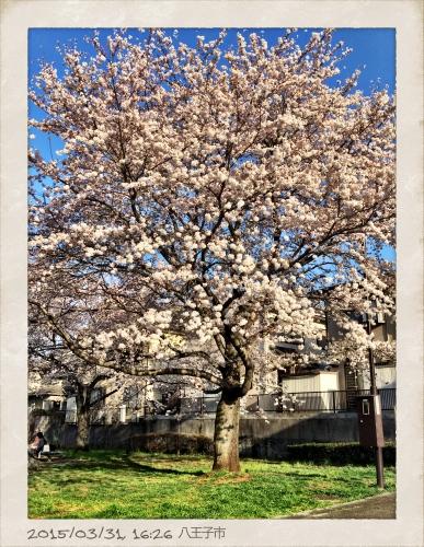 2015-03-31 16_Fotor