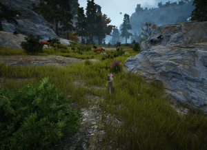 BDO Marni Cave Path Horse Location