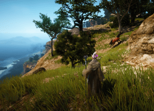 BDO North Media Cliffside Horse Map