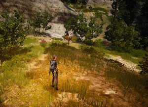BDO Serendia Shrine Horse Location