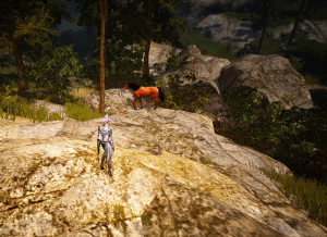 BDO Serendia Shrine Forest Horse Location