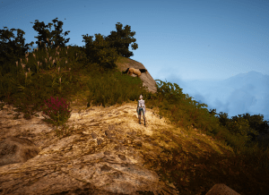 BDO Olvia / Florin Ridge Horse Location