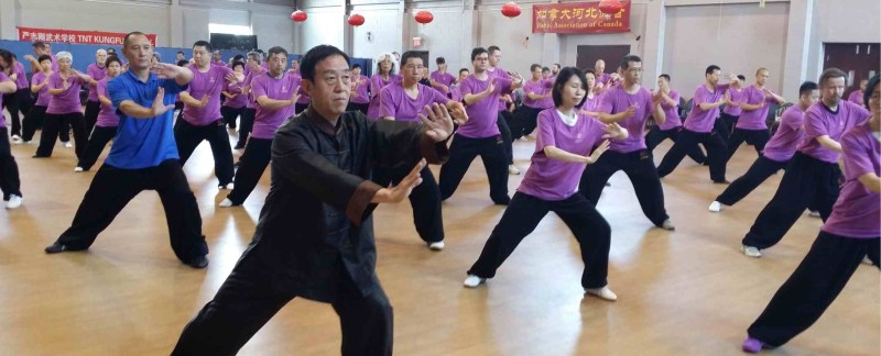 Grandmaster Chen Zhenglei at 2017 Light of Tai Chi