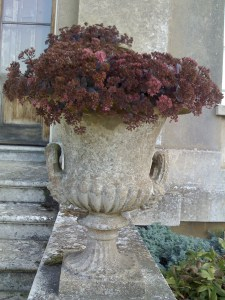 Gorgeous old Urn