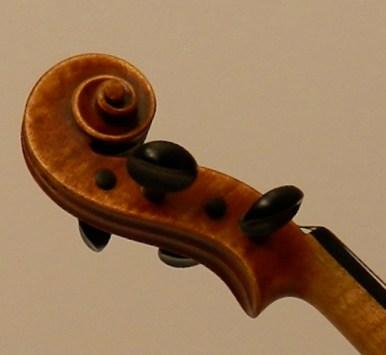 violinbolonia-c