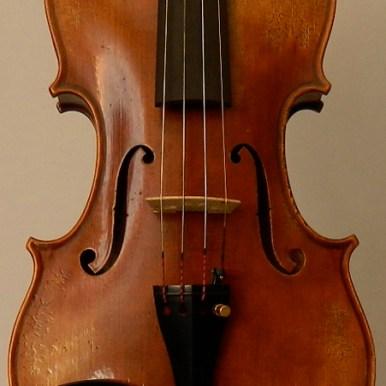 violinbolonia-t