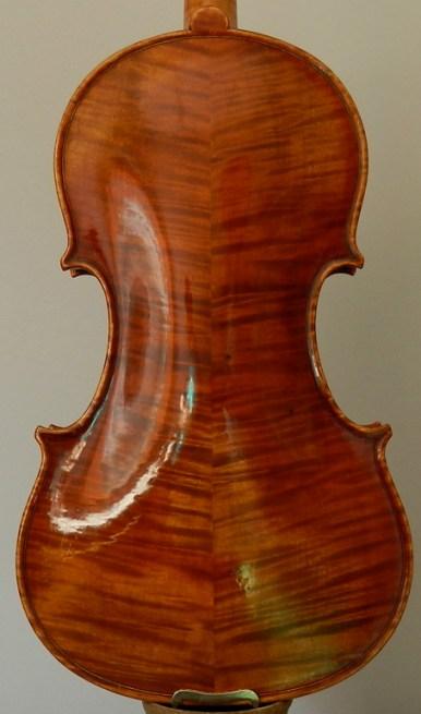 violinbresia-f