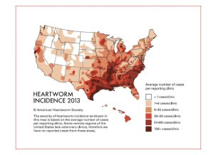 a-600-heartworm-map