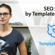 SEO Services by TemplateMonster
