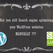 WordPress Enterprise & Multisite SEO Plugin by SeoSamba
