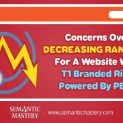 Concerns Over Decreasing Rankings For A Website With T1 Branded Ring Powered By PBNs