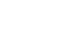 VIP Fan Auctions Logo