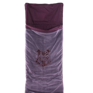 Lot #132 – Harry Potter and the Prisoner of Azkaban (2004) Hogwarts Student Screen Used Snuggle Sac®