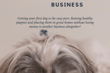 Starting A Dog Breeding Business   Best Dog 2018 Dog Breeding Business Plan Template Choice Image Cards Ideas