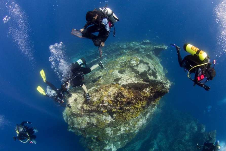 Discover Las Terrenas Diving