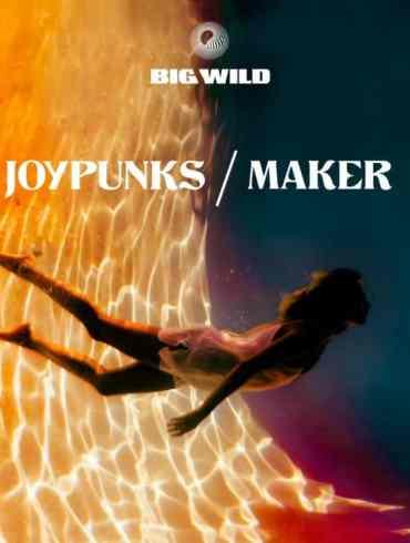 Joypunks & Maker