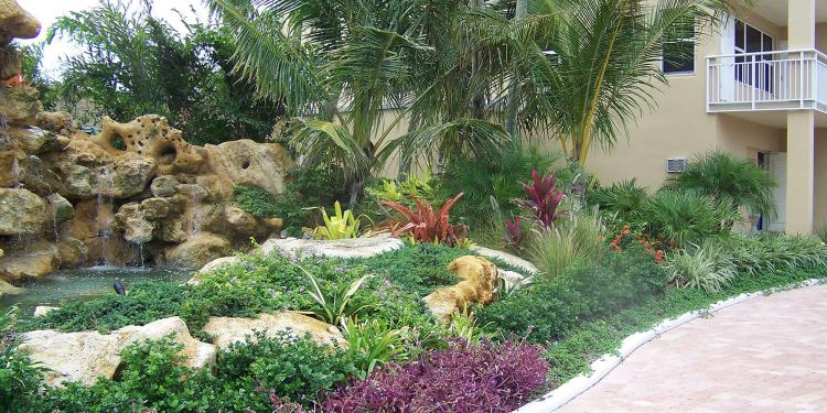 30+ Awesome Tropical Front Yard Landscape Ideas on Tropical Backyard Landscaping  id=13927