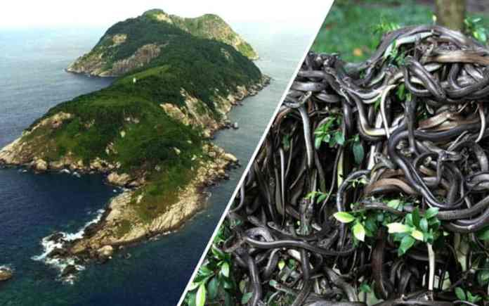 Snake Island, Brazil restricted places in world