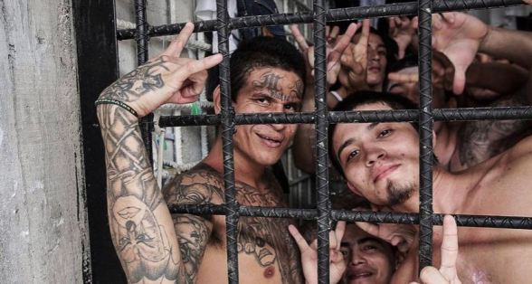 Top 10 Most Dangerous Gangs in the World 10
