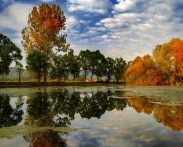 Breathtaking sceneries of Romania in the fairytale spirit of the Autumn.