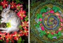 Beautiful Memorials For Dead Animals