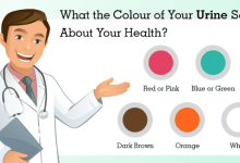 What your urine colour says about your health and what you should do