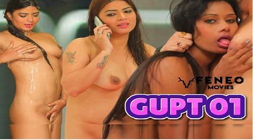 feneo-series-gupt-2020-hindi-season-01-episodes-01