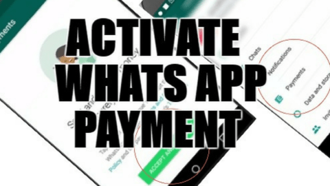 How to Activate Whats App payment