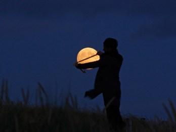 luna mide