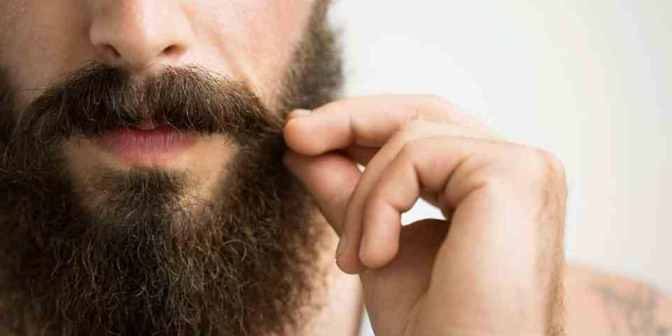 barba tupida marron