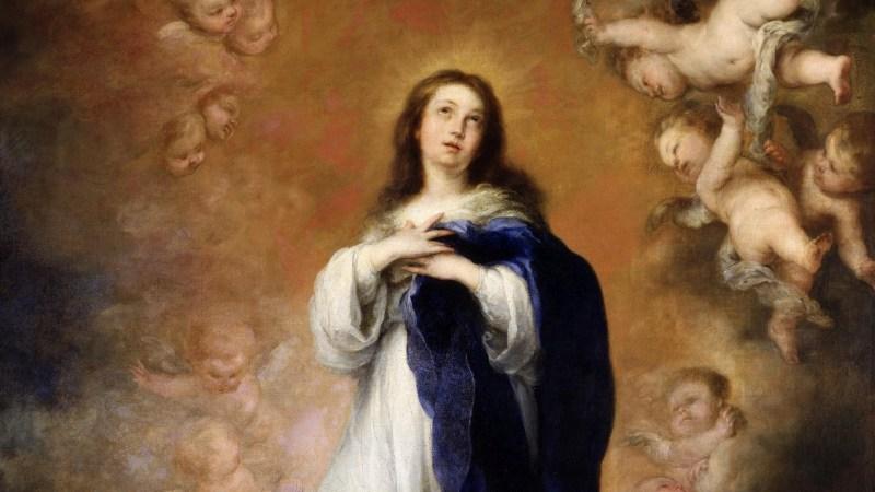 Actos por la Inmaculada Concepción