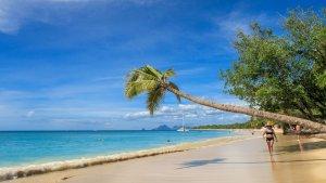 Martinique Islands Services