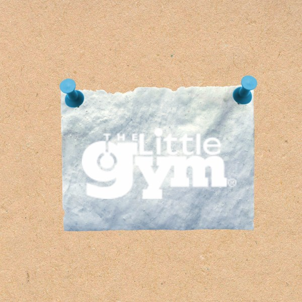 little-gym