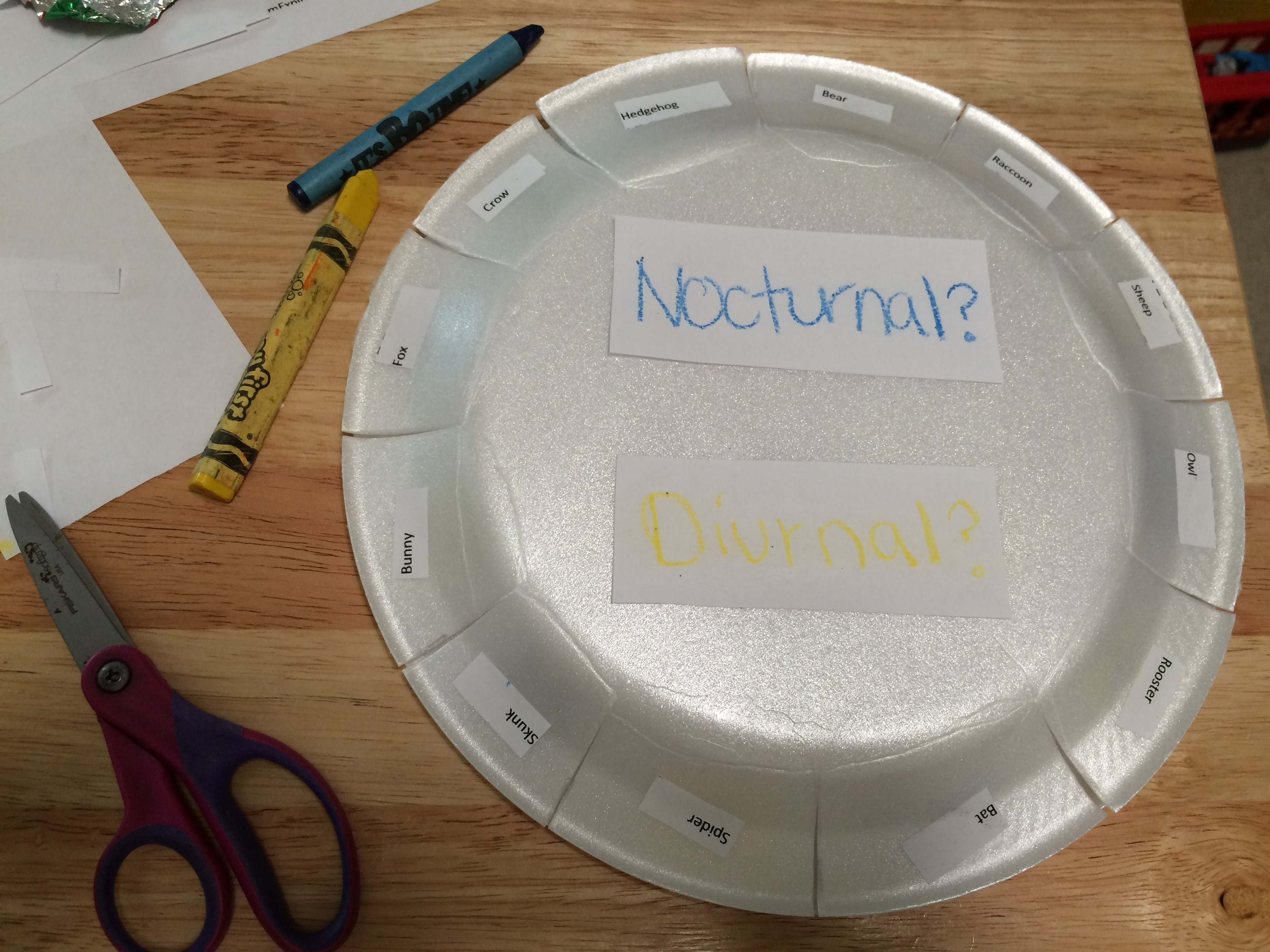 Nocturnal And Diurnal Animal Activity With Free Printable