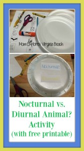 Nocturnal and Diurnal Animal Activity (with free printable)