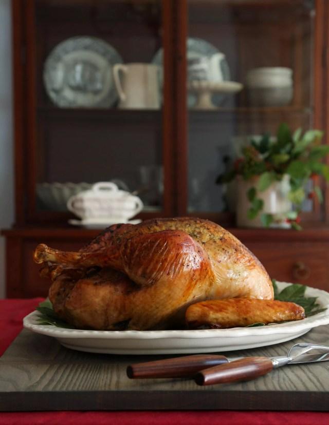 Turkey 101 on virginiawillis.com