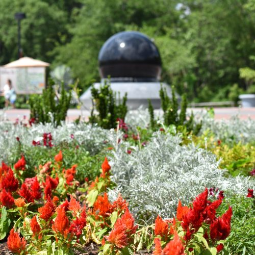 red and peach colored flowers among greenery with kugel ball in background