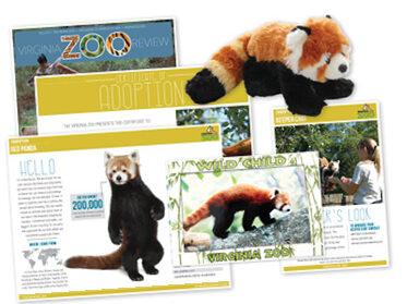 zoodoption graphic