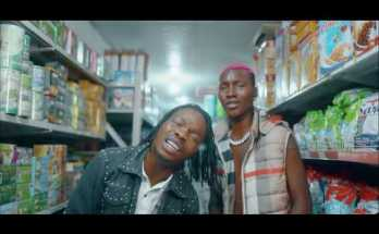 zinoleesky ft naira marley caro video