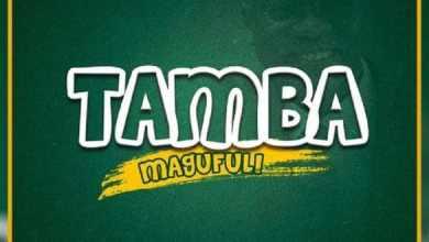 Photo of [Music] Mbosso – Tamba Magufuli