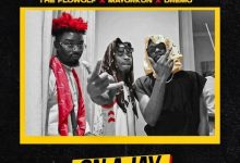 Photo of [Music] The Flowolf ft. Mayorkun, Dremo – On A Jay