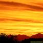 neon-sunset-1