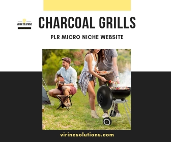 Niche Website For Sale -  Charcoal Grills Micro Niche