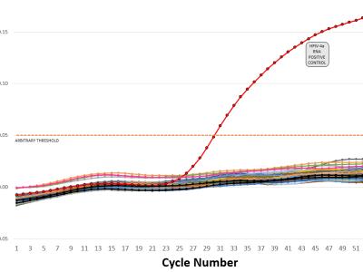 """The """"false-positive PCR"""" problem is not a problem"""