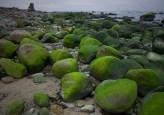 vihreiden kivien maa (c) Risto Lammin-Soila