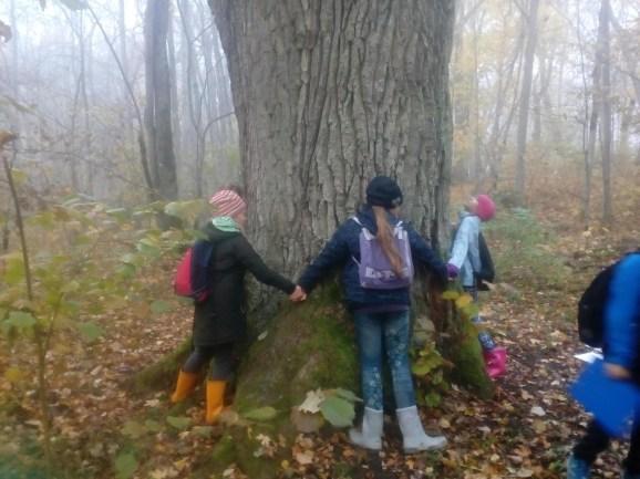 Tüdrukud ulatasid puud kallistama
